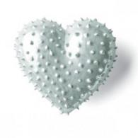 DenzHerz Corazón de porcelana ECHINUS-20